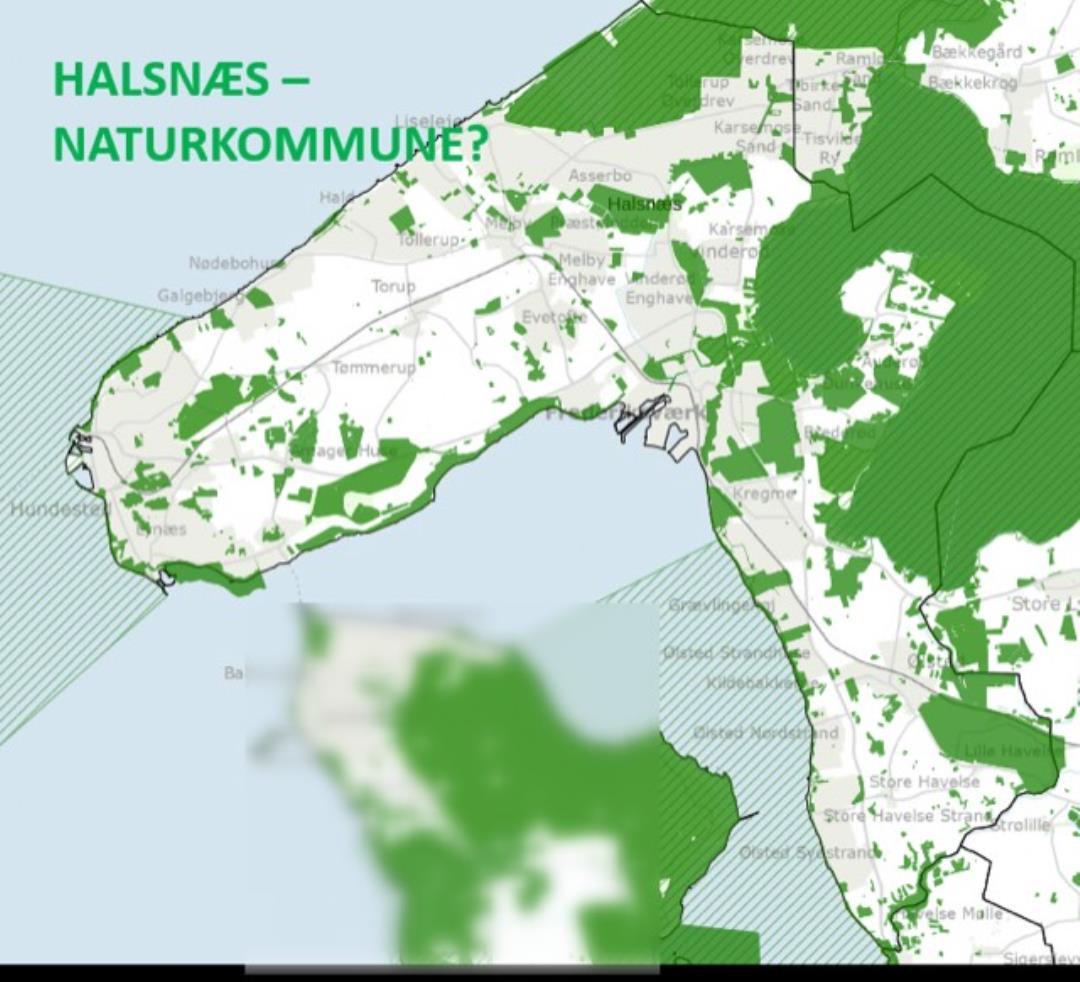 DN Halsnæs inviterer til åbent møde om naturen i Halsnæs